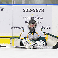 2nd year goalie Jane Kish (31) of the Regina Cougars in action during the Women's Hockey Home Game on October 14 at Co-operators arena. Credit: Arthur Ward/Arthur Images