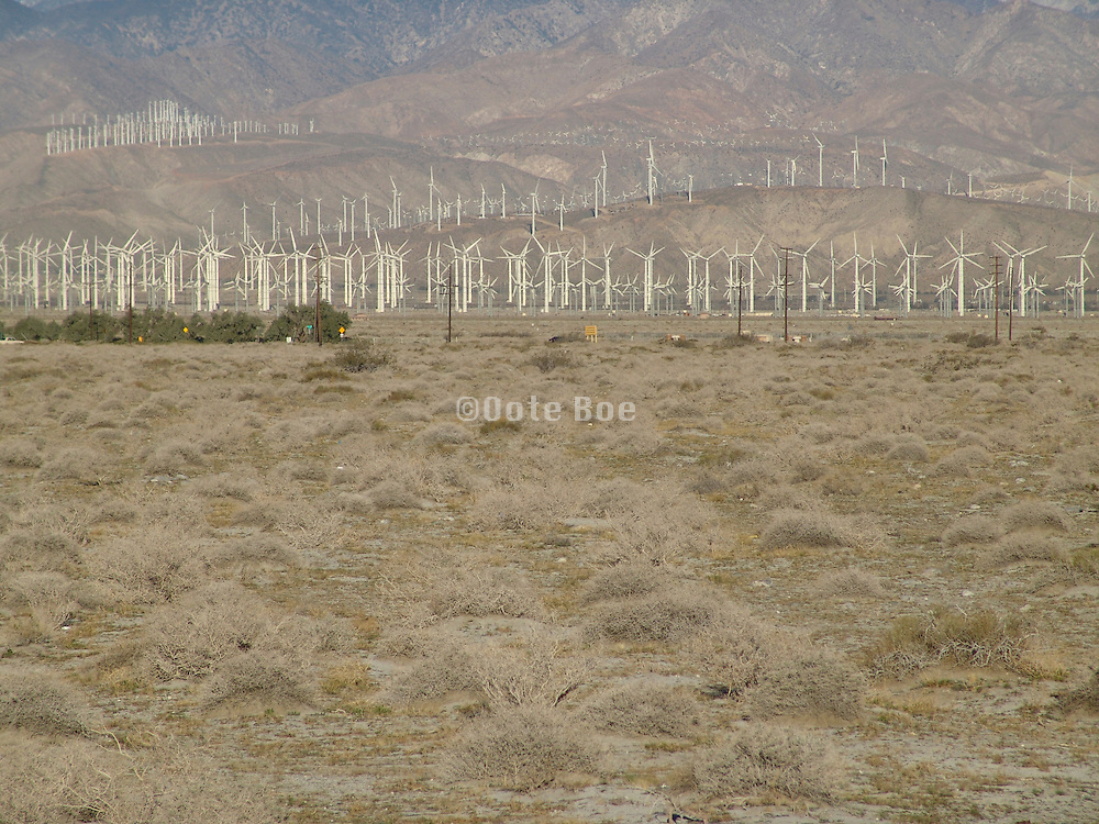 Wind energy farm in desert Palm Springs Southern California.