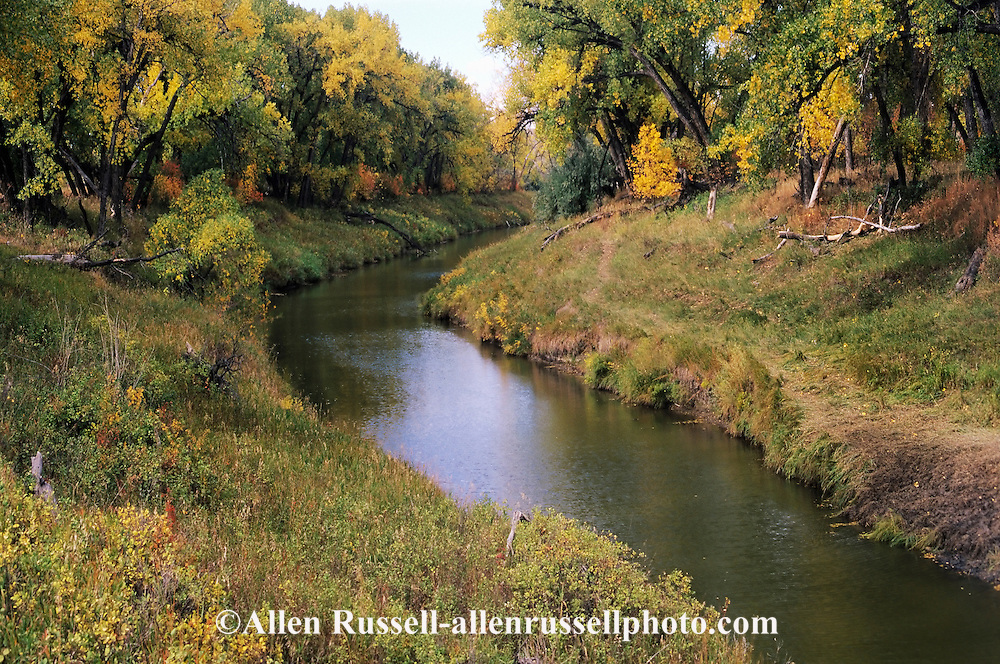 Milk River, Fall, west of Malta Montana