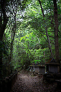 The Shikoku Pilgrimage, 88 temples associated with the Buddhist monk Kūkai (Kōbō Daishi) on the island of Shikoku, Japan.