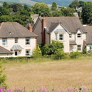 Modern housing development at the edge of a field in summertime, location - Scottish Borders
