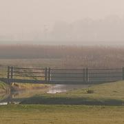 Footbridge at dawn, Kent