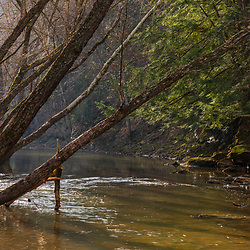 Goose Creek in the Hughes River Wildlife Management Area near Walker, West Virginia. Spring.
