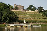 Elbeufer, Lingnerschloss, Schaufelrad Dampfer der Weissen Flotte, Dresden, Sachsen, Deutschland.|.Dresden, Germany, river Elbe, Lingner Castle, paddle steamer
