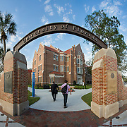 University of Florida-Business