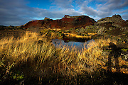 An upthrust of slowly oxidizing black lava covered in bright green moss in early morning light, east of Reykjavik, Iceland, October 18, 2015. <br /> Photo by David Lienemann<br /> www.davidlienemann.com