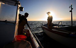 UK ENGLAND CORNWALL SENNEN COVE 11JUN08 - Cornish handline fishermen Will Treneer and Matthew Pascoe (R, in other boat) exchange news of the day's catch as they fish for Mackerel during sunrise off Sennen Cove on the southwestern coast of Cornwall, England...jre/Photo by Jiri Rezac / WWF UK..© Jiri Rezac 2008..Contact: +44 (0) 7050 110 417.Mobile:  +44 (0) 7801 337 683.Office:  +44 (0) 20 8968 9635..Email:   jiri@jirirezac.com.Web:    www.jirirezac.com..© All images Jiri Rezac 2008 - All rights reserved.