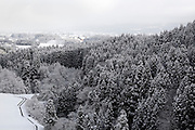 trees covered with snow on a mountain slope in Gifu prefecture Japan