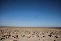 Abandoned fishing boats remain on the dried seabed of South Aral Sea which used to be  one of the four largest lakes in the world. Nowadays the total area of the dried bottom of the Aral Sea is more than 4 millions hectares.