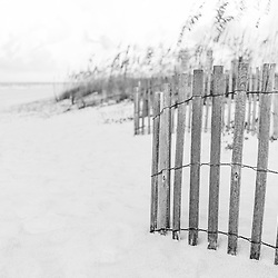 Pensacola Beach Florida beach fence and beach grass black and white photo. Pensacola Beach is a coastal city in the Emerald Coast area of the Southeastern United States. Copyright ⓒ 2018 Paul Velgos with All Rights Reserved.