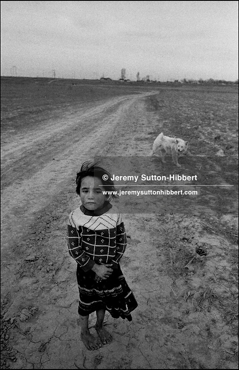SINTESTI, ROMANIA, 1993..©JEREMY SUTTON-HIBBERT 2000..TEL./FAX.  +44-141-649-2912..tel. +44-7831-138817.EMAIL J.S.HIBBERT@BTINTERNET.COM