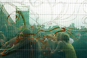 The crowd of the festival seen from behind the fence, Boomtown, Matterley Estate, Alresford Road, near Winchester, Hampshire, UK, August, 2010