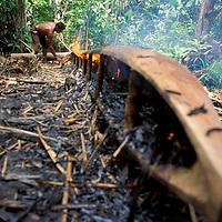 Hombre Warao fabricando curiara, Delta Amacuro, Venezuela