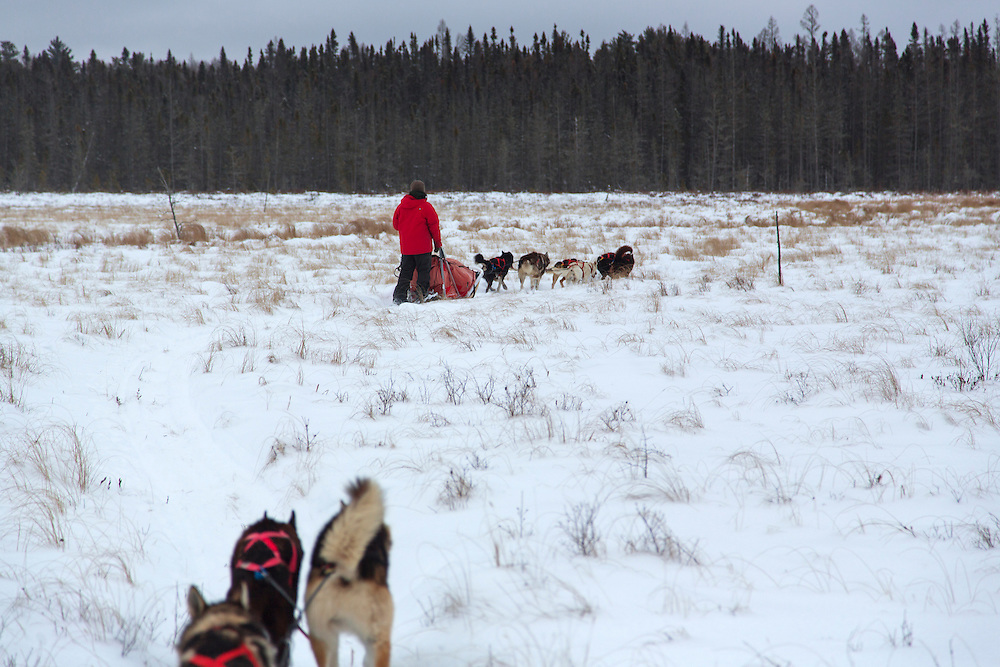 White Wilderness Sled Dog Adventure<br /> Action<br /> Boundary Waters/Ely, MN, USA<br /> 1/20/2015<br /> X159190 TK1<br /> Credit: Tom Lynn<br /> White Wilderness Sled Dog Adventures based outside of Ely, MN.  A backcountry trip through the Boundary Waters of northern Minnesota along the Canadian border on a dog sled with 5 other mushers.White Wilderness Sled Dog Adventures based outside of Ely, MN.  A backcountry trip through the Boundary Waters of northern Minnesota along the Canadian border on a dog sled with 5 other mushers.White Wilderness Sled Dog Adventures based outside of Ely, MN.  A backcountry trip through the Boundary Waters of northern Minnesota along the Canadian border on a dog sled with 5 other mushers.White Wilderness Sled Dog Adventures based outside of Ely, MN.  A backcountry trip through the Boundary Waters of northern Minnesota along the Canadian border on a dog sled with 5 other mushers.White Wilderness Sled Dog Adventures based outside of Ely, MN.  A backcountry trip through the Boundary Waters of northern Minnesota along the Canadian border on a dog sled with 5 other mushers.