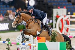 Bost Roger Yves, FRA, Sangria du Coty<br /> JIM Maastricht 2019<br /> CSI4* Van Mossel Prix<br /> © Hippo Foto - Dirk Caremans<br />  09/11/2019