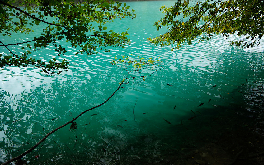 Autumn leaves and turquoise colour of the water of Plitvice Lakes, Croatia.