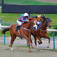 Markami and L P Keniry winning the 2.20 race