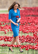 Prince William, Duke of Cambridge and Catherine, Duchess of Cambridge with Prince Harry visit The Tower Of London's Ceramic Poppy Field at Tower of London