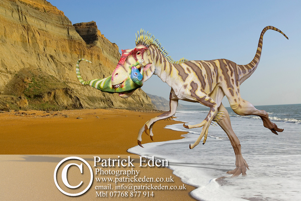 Photoshop Montage of Eotryannus dinosaur on Chale Beach Isle of Wight England, an area where fossils of this species have been found. Portfolio, Photography, Patrick Eden, Photography, Isle of Wight, England, UK photography photograph canvas canvases