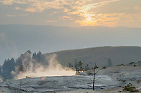 Steam rising off Mammoth Hot Springs at sunrise, Yellowstone National Park