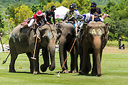 "29 AUGUST 2013 - HUA HIN, PRACHUAP KHIRI KHAN, THAILAND: Elephant polo game action in the King Power Duty Free vs The Devil game at the King's Cup Elephant Polo Tournament in Hua Hin. The tournament's primary sponsor in Anantara Resorts and the tournament is hosted by Anantara Hua Hin. This is the 12th year for the King's Cup Elephant Polo Tournament. The sport of elephant polo started in Nepal in 1982. Proceeds from the King's Cup tournament goes to help rehabilitate elephants rescued from abuse. Each team has three players and three elephants. Matches take place on a pitch (field) 80 meters by 48 meters using standard polo balls. The game is divided into two 7 minute ""chukkas"" or halves. There are 16 teams in this year's tournament, including one team of transgendered ""ladyboys.""    PHOTO BY JACK KURTZ"