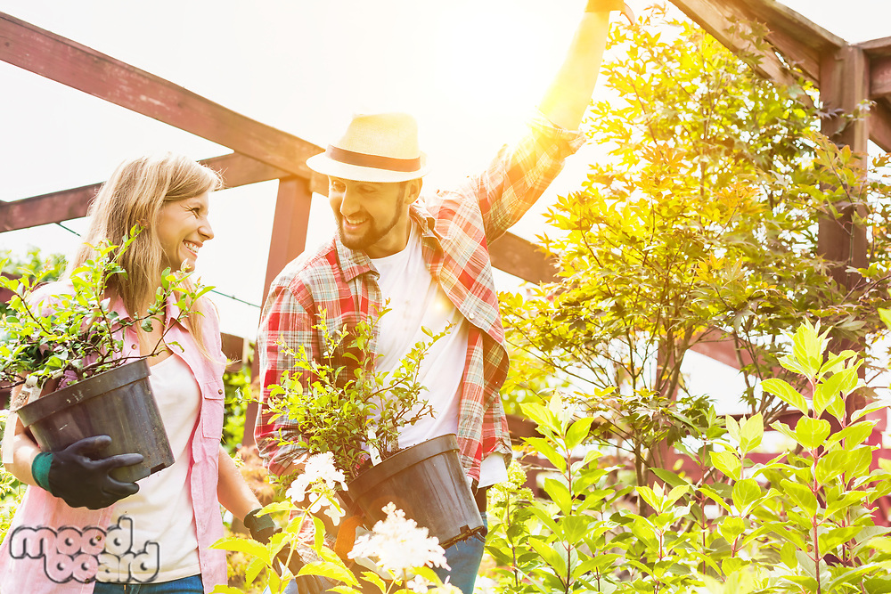 Portrait of mature female and male gardeners carrying plants on pot