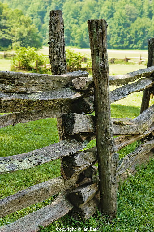 Rail Fence,Great Smoky Mts.