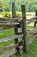 Rail Fence,Great Smoky Mts.