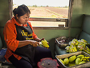 20 MARCH 2015 - PRACHINBURI, PRACHINBURI, THAILAND: A mango vendor cuts up mangos before selling them on the 3rd class train going to Kabin Buri. The State Railways of Thailand (SRT), established in 1890, operates 4,043 kilometers of meter gauge track that reaches most parts of Thailand. Much of the track and many of the trains are poorly maintained and trains frequently run late. Accidents and mishaps are also commonplace. Successive governments, including the current military government, have promised to upgrade rail services. The military government has signed contracts with China to upgrade rail lines and bring high speed rail to Thailand. Japan has also expressed an interest in working on the Thai train system. Third class train travel is very inexpensive. Many lines are free for Thai citizens and even lines that aren't free are only a few Baht. Many third class tickets are under the equivalent of a dollar. Third class cars are not air-conditioned.  PHOTO BY JACK KURTZ