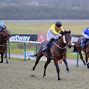 Lingfield 9th January
