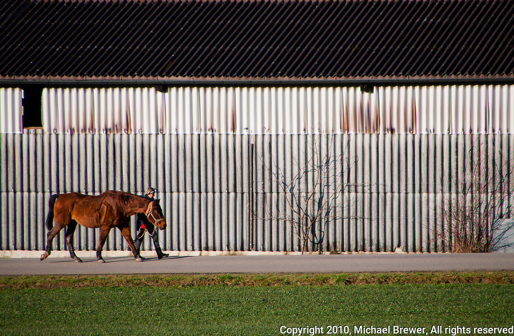 Woman leading a horse along a corrugated metal barn in Switzerland.