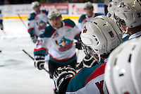 KELOWNA, CANADA - DECEMBER 30: The Kelowna Rockets celebrate a goal against the Prince George Cougars on December 30, 2014 at Prospera Place in Kelowna, British Columbia, Canada.  (Photo by Marissa Baecker/Shoot the Breeze)  *** Local Caption *** Goal;