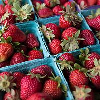 Roseburg Farmer's Market, Roseburg, Oregon