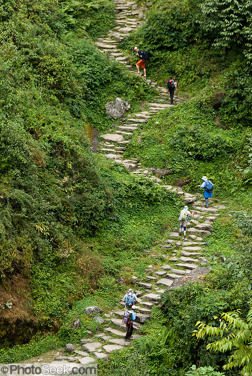 Trekkers ascend steep stone steps up to Chomrong (alternative spellings Chhomrong, Chhomrung, Chhumro; 7250 feet elevation) in the Annapurna Conservation Area of Nepal.