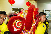 09 FEBRUARY 2014 - HAT YAI, SONGKHLA, THAILAND: Lion dancers get ready to perform during Lunar New Year in the Tong Sia Siang Tueng temple in Hat Yai. Hat Yai was originally settled by Chinese immigrants and still has a large ethnic Chinese population. Chinese holidays, especially Lunar New Year (Tet) and the Vegetarian Festival are important citywide holidays.     PHOTO BY JACK KURTZ
