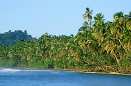 Cahuita National Park, Limon, Costa Rica. <br />
