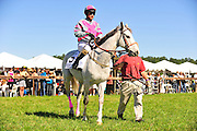 April 7, 2012 - Gus Dahl and Cuse, Stoneybrook Steeplechase, Raeford NC