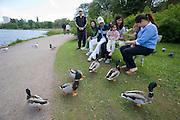 Töölö Lake. Asian family feeding ducks.