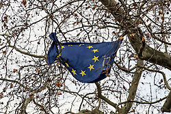 © Licensed to London News Pictures. 16/12/2019. London, UK. An EU flag lies in tatters in a tree near the Houses of Parliament in Westminster, London. Last week the Conservative Party achieved a majority of 80 seats in a general election which saw large numbers of seats traditionally held by Labour switch to the Tories. Photo credit: Ben Cawthra/LNP