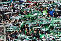 Supporters Saint Etienne - 26.04.2015 - Saint Etienne / Montpellier - 34eme journee de Ligue 1<br />Photo : Jean Paul Thomas / Icon Sport