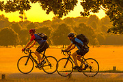 UNITED KINGDOM, London: 25 July 2019 <br /> Cyclists make their way through Richmond Park as the sun rises on what could be the hottest day ever recorded in Britain. Temperatures are set to reach up to 39 degrees Celsius later today.<br /> Rick Findler / Story Picture Agency