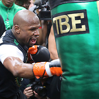 Mayweather Workout