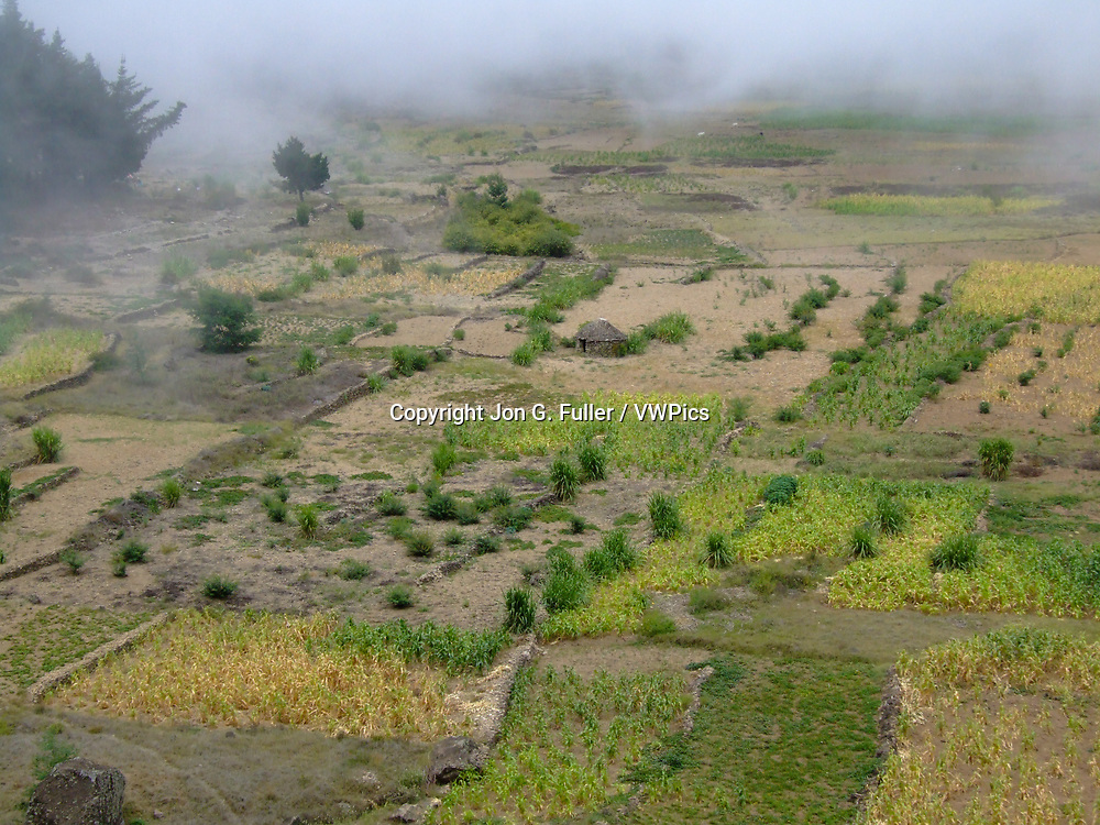 Farmers grow corn and other crops on the floor of the Cova de Paul volcanic crater on Santo Antao, Republic of Cabo Verde, Africa.