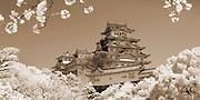Cherry blossoms frame Himeji Castle, Himeji, Japan. infrared. sepia toned.