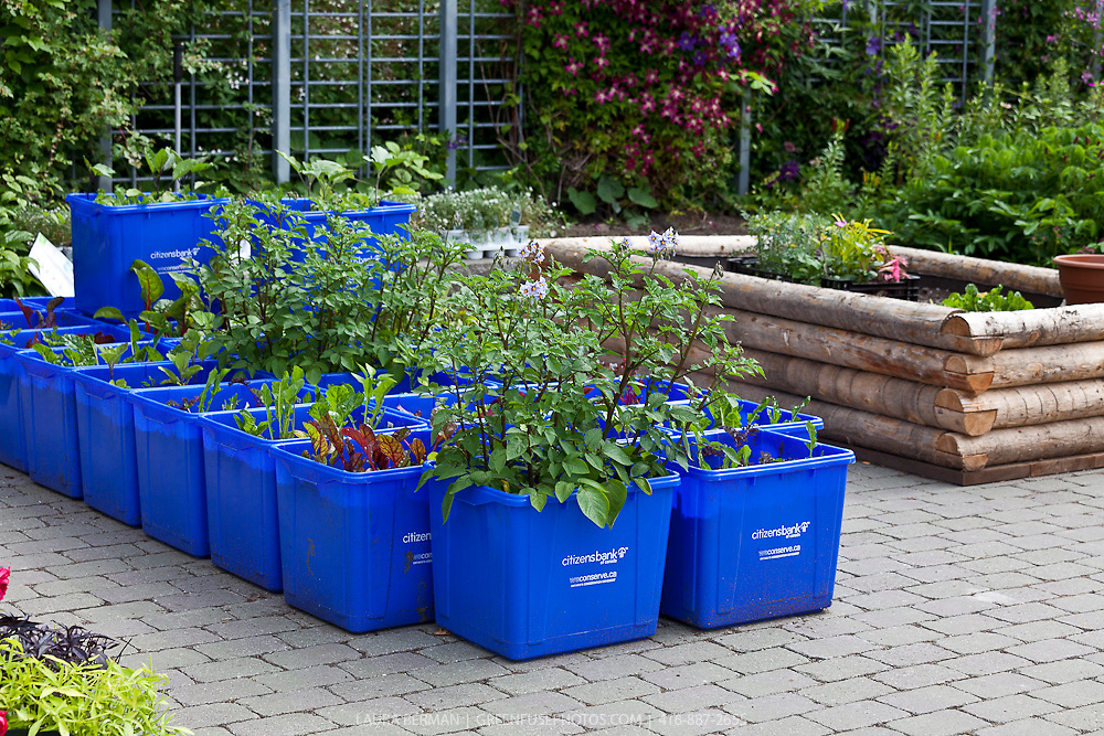 Edible container garden greenfuse photos garden farm food photography - Containers for vegetable gardening ...