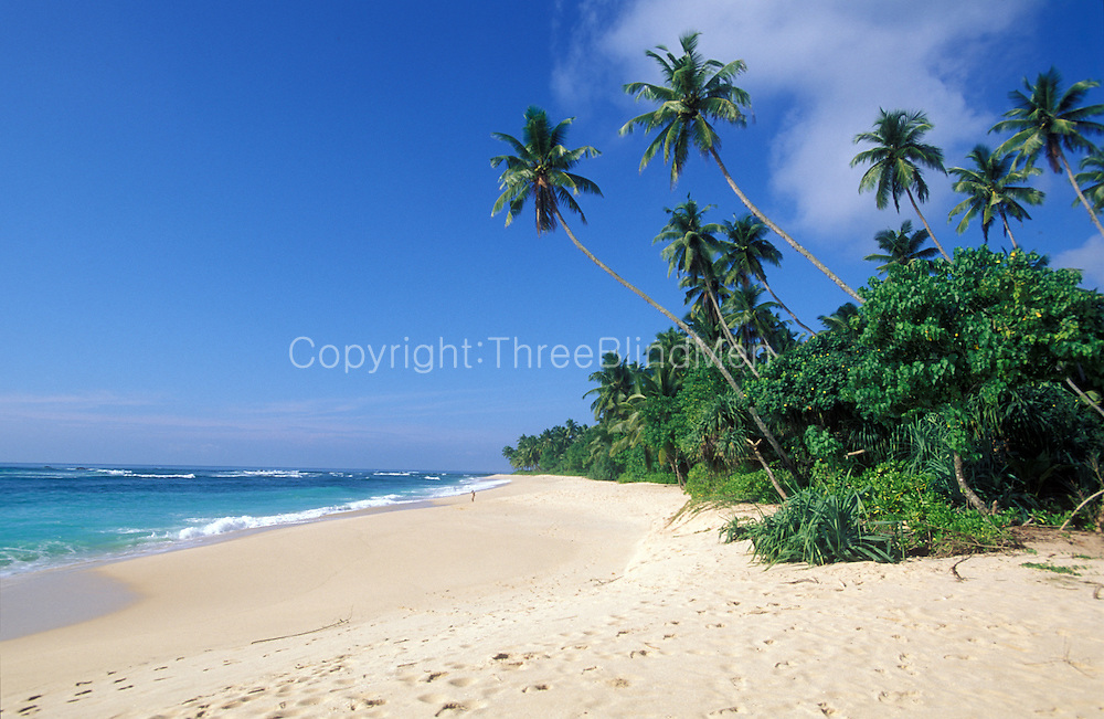 Sri Lanka..A wide beach on the south coast of the country.