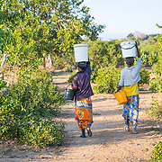 CAPTION: Two women walk from an old borehole pump, carrying heavy buckets of water on their heads. More borehole pumps mean more people like them will have easier access to water for household use, as well as for agriculture. LOCATION: Mawoneke Village, Chivi District, Masvingo Province, Zimbabwe. INDIVIDUAL(S) PHOTOGRAPHED: N/A.