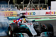 Lewis Hamilton has been named in the 'Paradise Papers' regarding the purchase of his Bombardier Challenger 605 private jet.<br /> Here pictured winning his fourth Formula One World Championship title on 29th October at Circuit Hermanos Rodriguez, Mexico City<br /> Picture by EXPA Pictures/Focus Images Ltd 07814482222<br /> 06/11/2017<br /> *** UK &amp; IRELAND ONLY ***<br /> <br /> EXPA-EIB-171030-0145.jpg