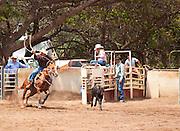 Rodeo, Kaunakakai, Molokai, Hawaii
