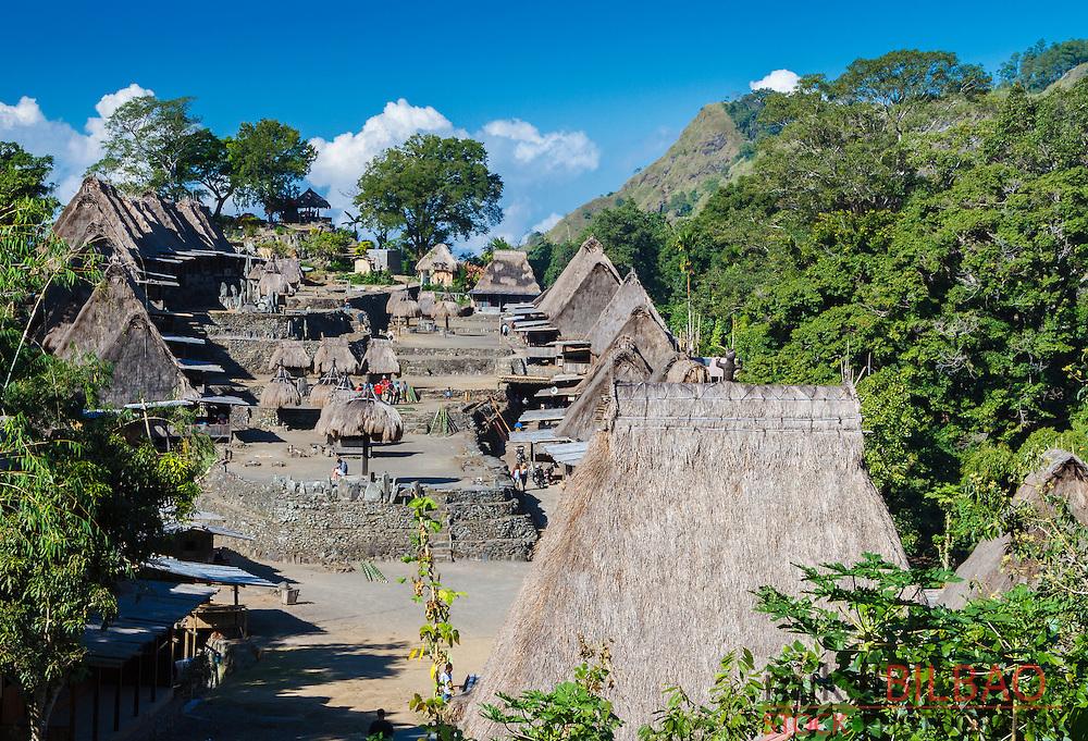 Bena village. Flores island.  Indonesia.